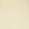 SILK SHANTUNG SOLIDS - FICELLE [BA143]