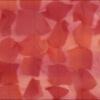 """SILK CHIFFON PETALS - """"TIE DYE"""" BERRYCRUSH [CF492]"""