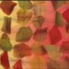 "SILK CHIFFON PETALS - ""TIE DYE"" FALL FEST [CF500]"
