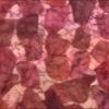 "SILK CHIFFON PETALS - ""TIE DYE"" PAMOGRANE [CF504]"