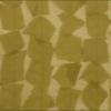 SILK CHIFFON PETALS - KIWI [CF526]